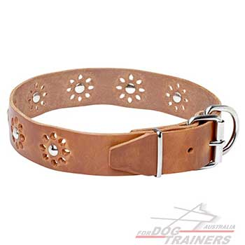 Tan color dog leather collar