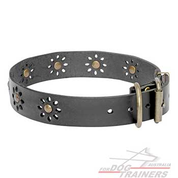 Beautiful Leather Dog Collar for Your Pet