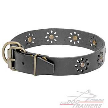 Dog Leather Collar with Non-Rusting Brass Fittings