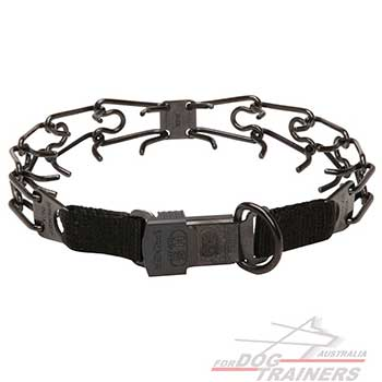 Stainless Steel Dog Pinch Collar