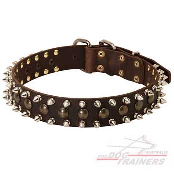 Stylish leather spiked collar