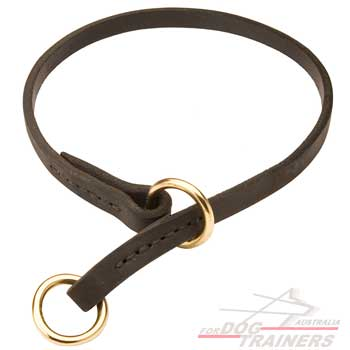 Choke collar for effective dogs training