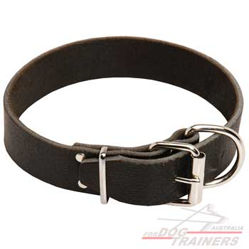 Leather dog collar smooth