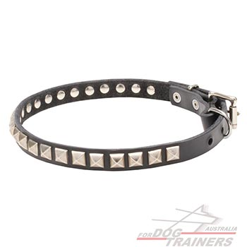 Full grain natural leather dog collar with studs
