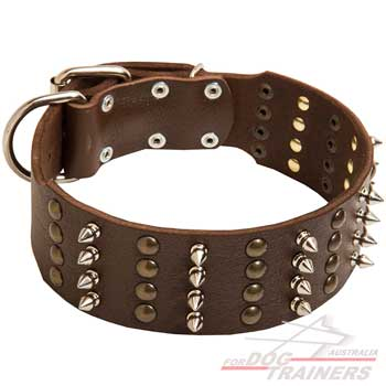 Leather dog collar with 4 rows of decoration