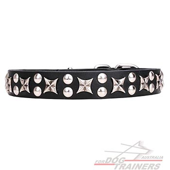 Dog leather collar with chrome plated stars and studs