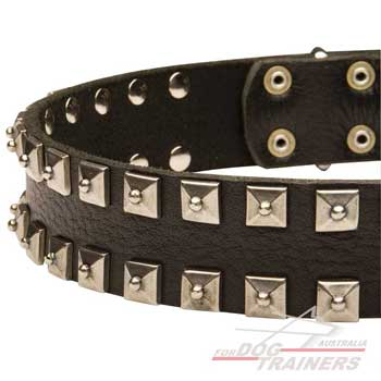 Dog collar with studs decoration
