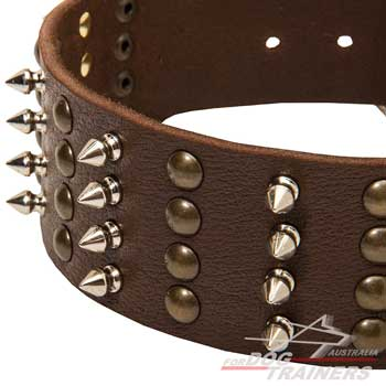Leather dog collar wide with spikes and studs