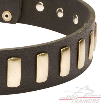 Leather dog collar for large dog breeds
