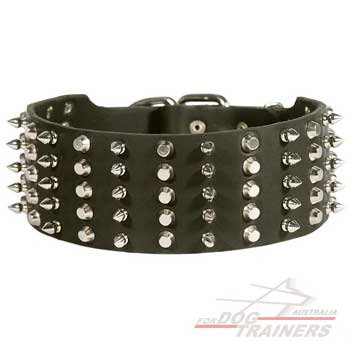 Dog leather collar with spikes and pyramids