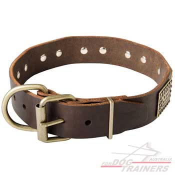 Dog leather collar with easy adjustable buckle