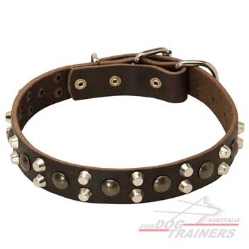 Leather collar with pyramids and studs