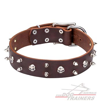 Decorated brown leather dog collar with spikes