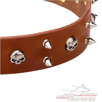 Polished tan leather dog collar