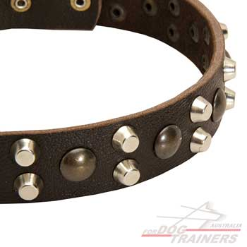 Leather fashionable collar polished and decorated