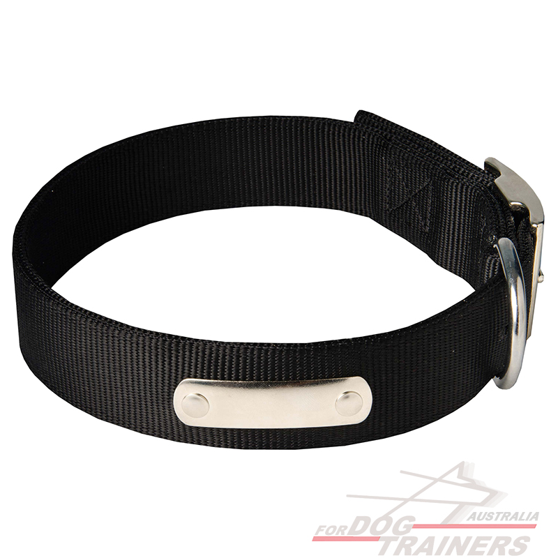 Dog Id Collars Australia