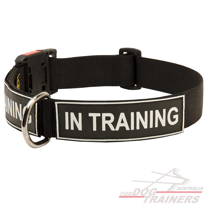 Working Dog Collars Australia