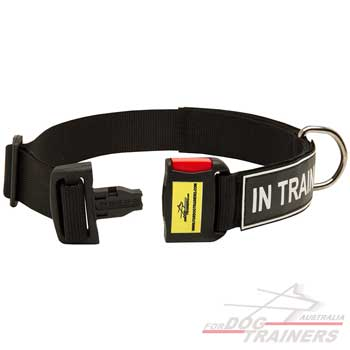 Adjustable dog collar with quick release buckle