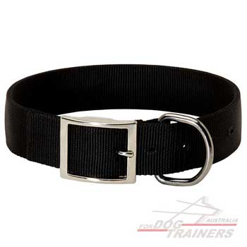 Nylon dog collar with steel fittings