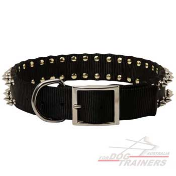 Nylon spiked dog collar