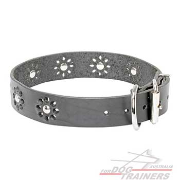 Steel nickel plated hardware on decorated black leather collar for dogs
