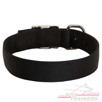 Nylon dog walking collar