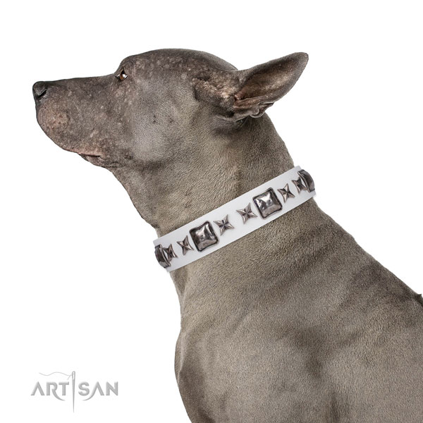 Amazing adorned natural leather dog collar for comfortable wearing