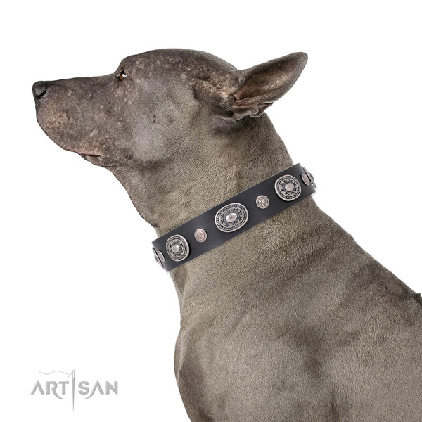 Durable buckle and D-ring on full grain leather dog collar for stylish walking