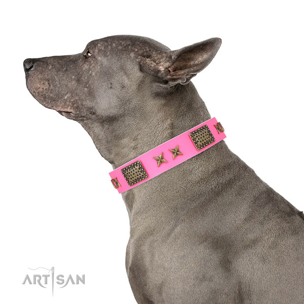 Impressive adornments on daily use natural genuine leather dog collar