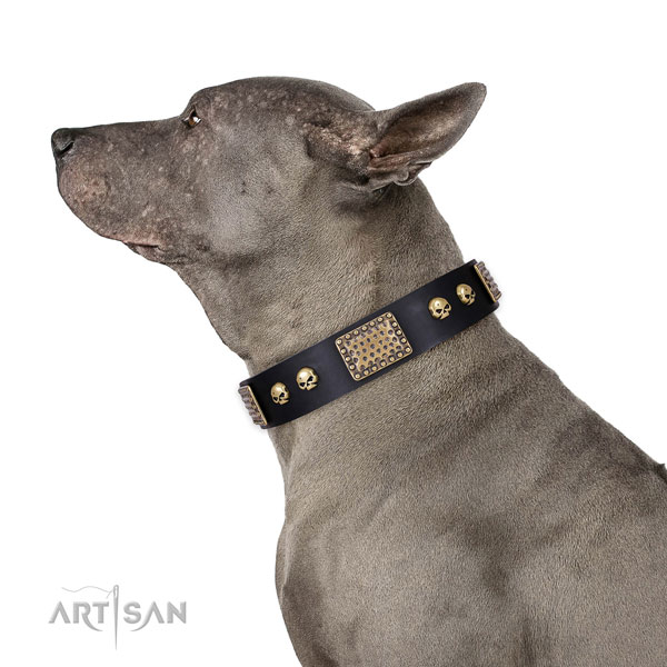 Corrosion proof D-ring on natural genuine leather dog collar for everyday walking