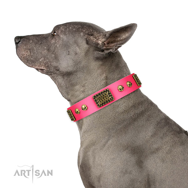 Reliable D-ring on natural leather dog collar for handy use