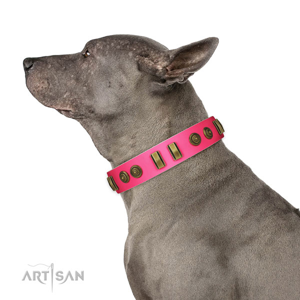 Easy wearing dog collar of natural leather with impressive adornments