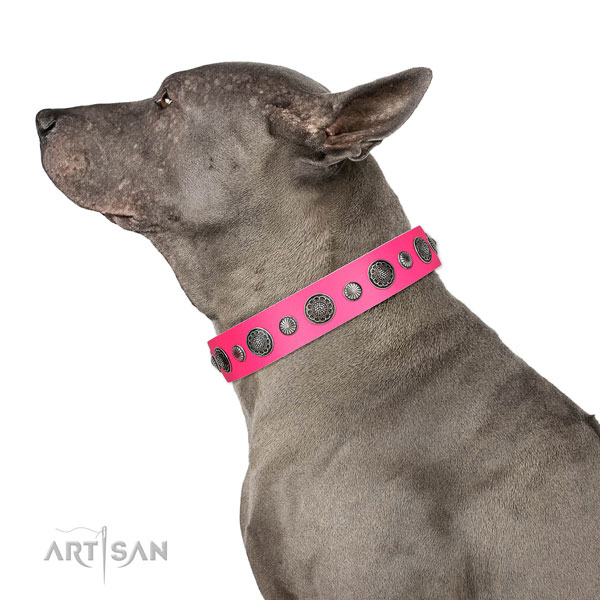 Easy wearing leather dog collar with corrosion proof fittings