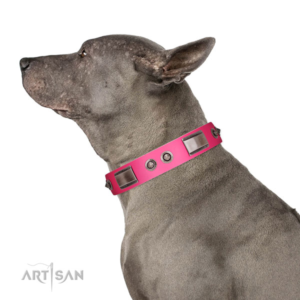 Designer genuine leather dog collar with studs