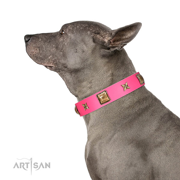 Leather dog collar of soft material with top notch embellishments