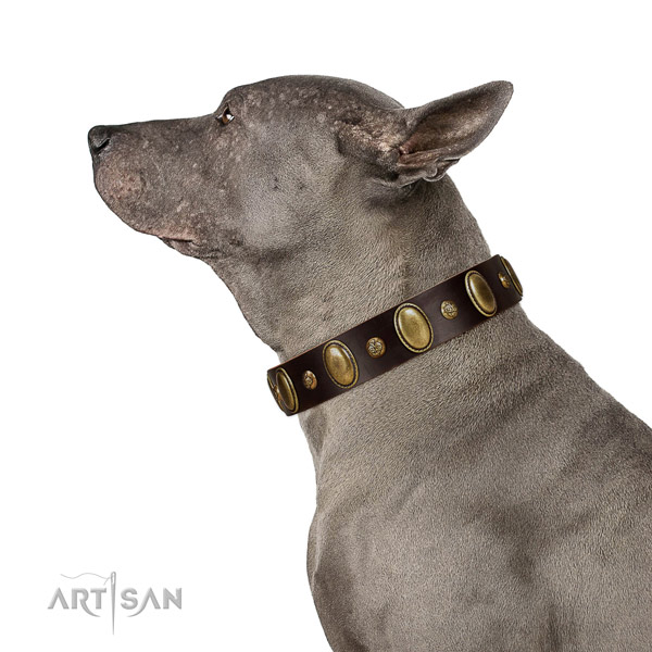 Full grain natural leather dog collar of reliable material with incredible adornments