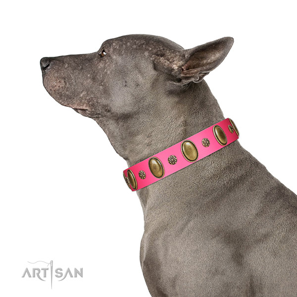 Strong genuine leather dog collar with corrosion resistant traditional buckle