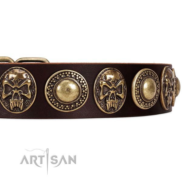 Natural genuine leather dog collar with embellishments for daily walking