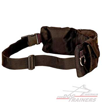 Nylon Training Dog Pouch