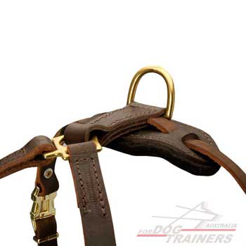 D-Ring for Leash Leather Tracking Harness Dog Walking