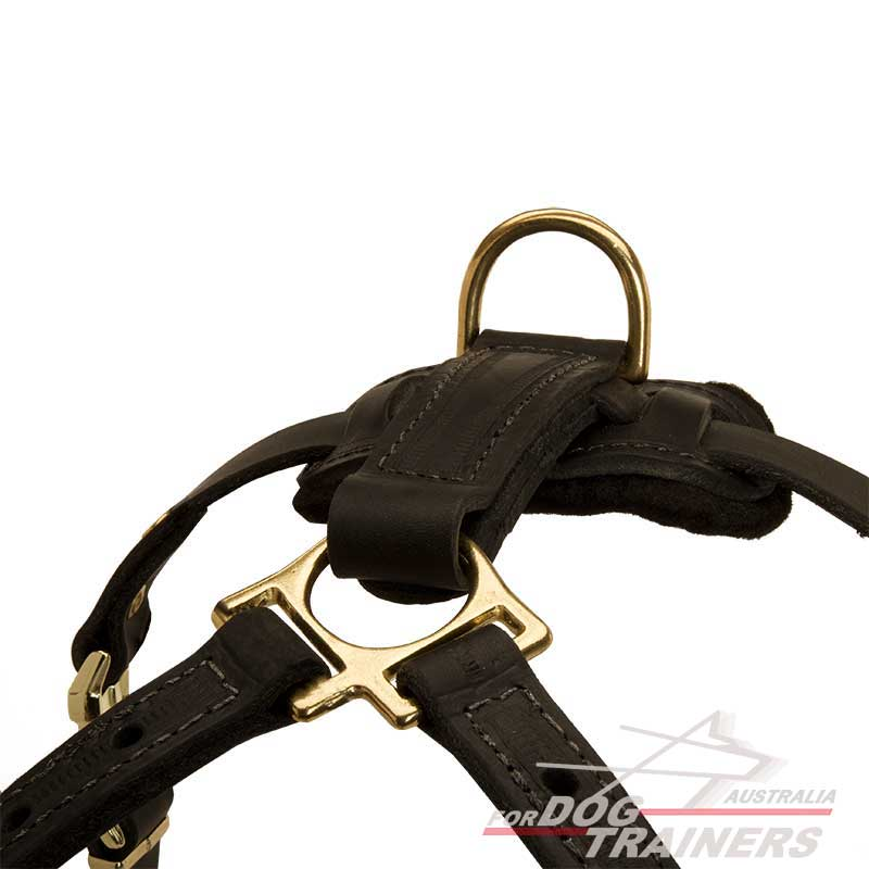 Buy Light Weight Adjustable Dog Harness For Tracking
