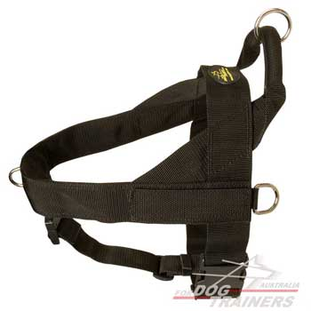 Dog harness with quick release buckle