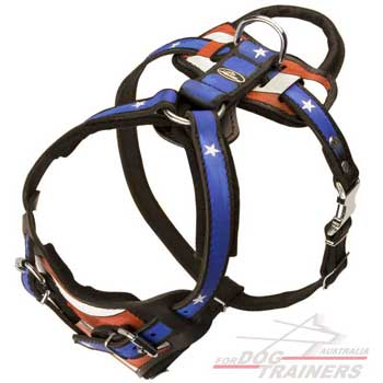 Fashion harness with comfortable handle