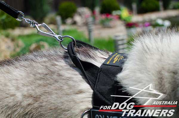 Husky harness nylon extra strong with handle for better dog controlling