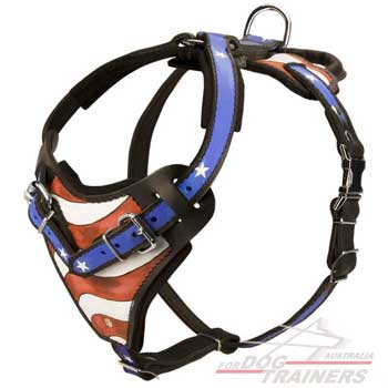 Leather dog harness american flag painted