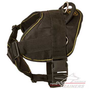 Easy wearing harness with quick release buckle