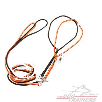 Safe Nylon Dog Leash