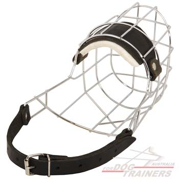 Perfectly ventilated wire cage muzzle