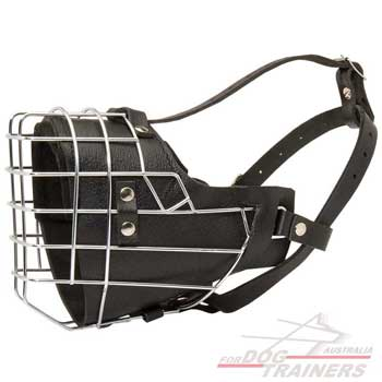 Excellent Leather Canine Muzzle Wire Cage Padded