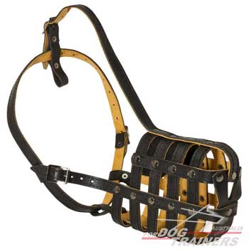 Nappa Padded Leather Mesh Dog Muzzle Well Ventilated